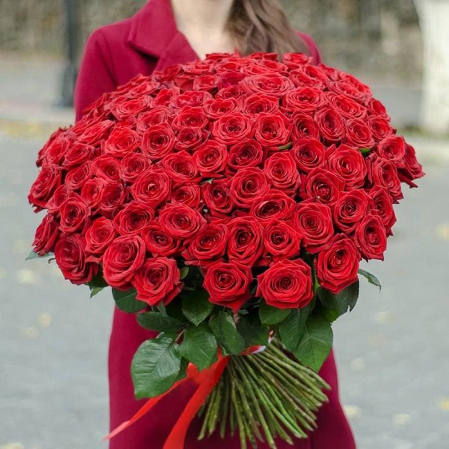 101 роза красная роза