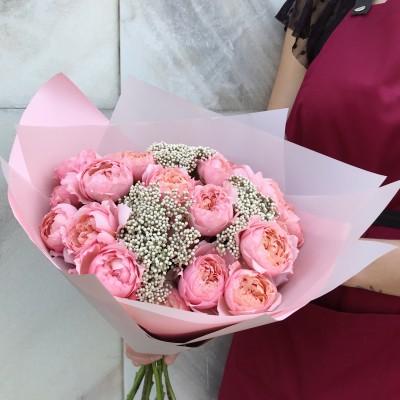 Пионовидная роза с озотамнусом